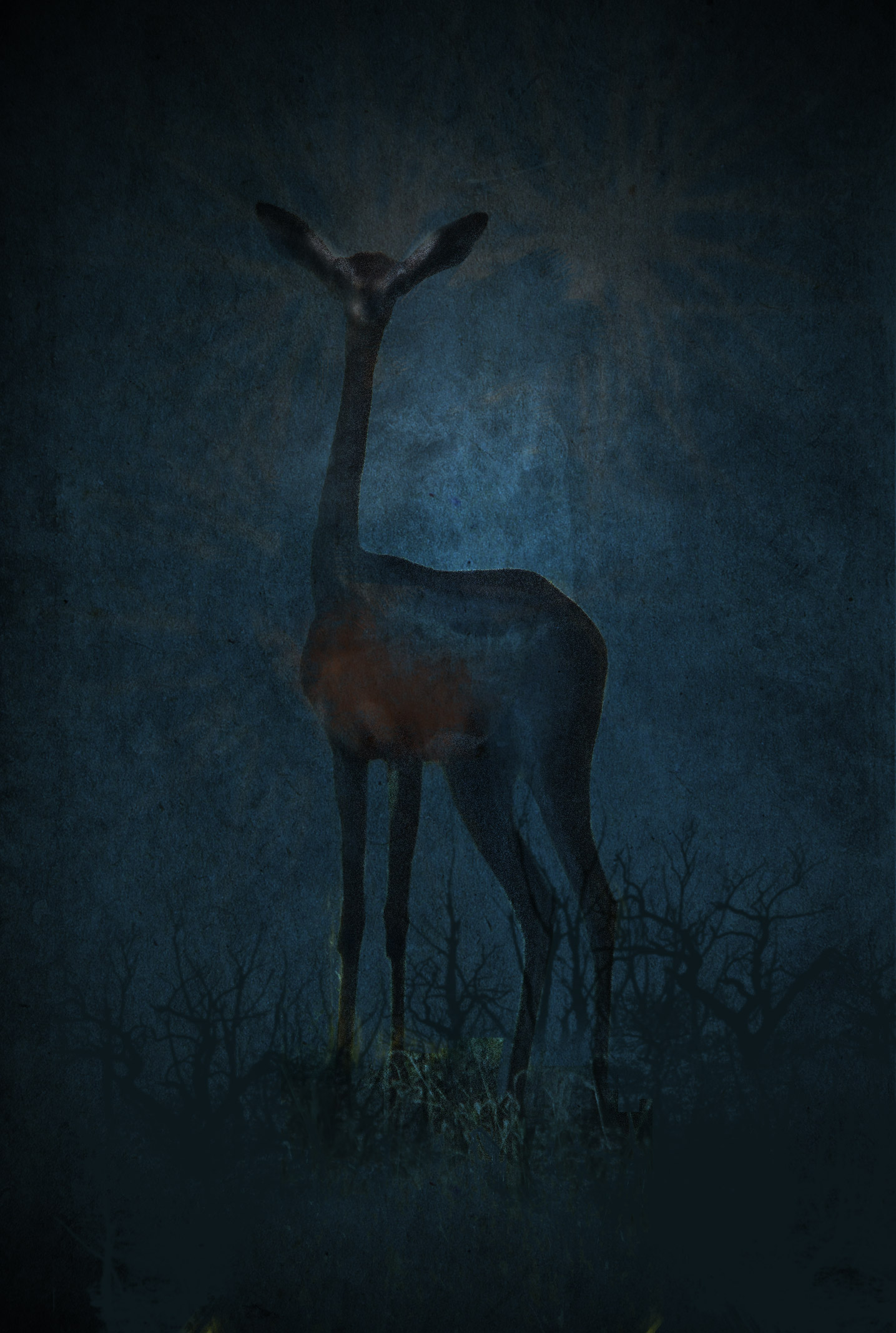 sue-art-Gerenuk